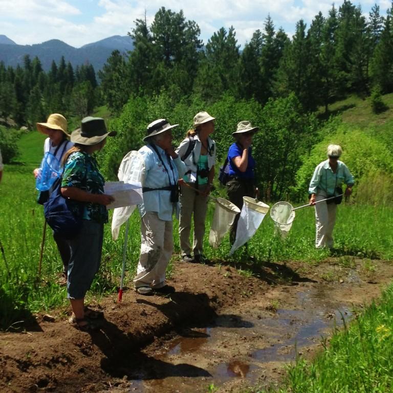 Volunteer Naturalists – Sharing Nature
