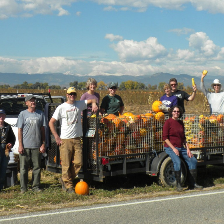 Helpful Harvest: Gleaning for Good