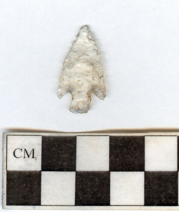 A quartz crystal projectile point excavated from hearth feature. The hearth dates from AD 650 to AD 1150. The point measures approximately 1.5 centimeters wide.