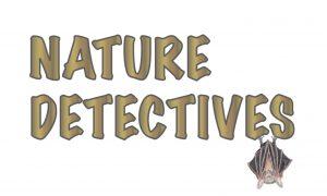 Nature Detectives Bats