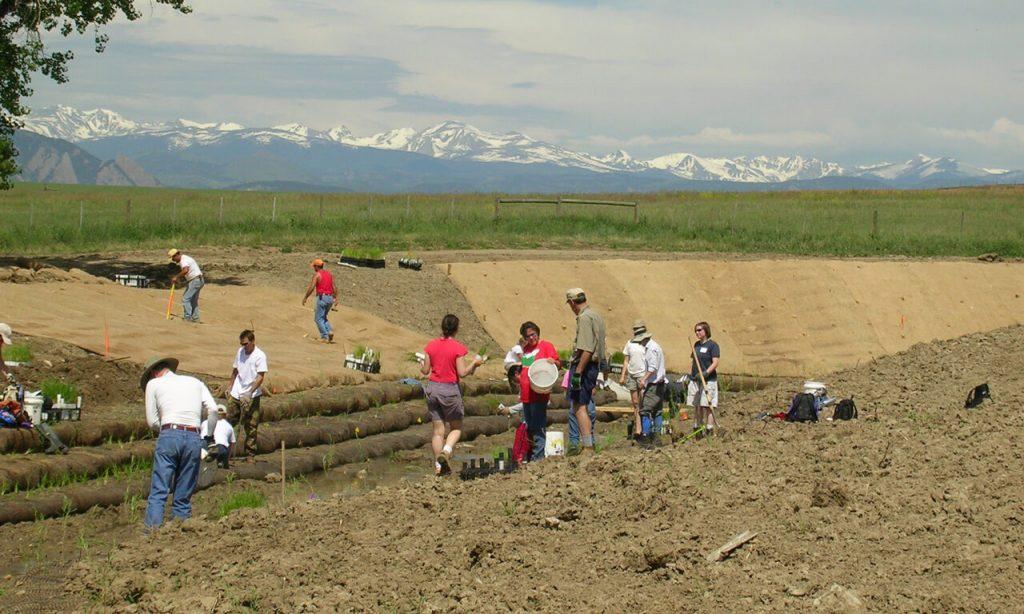 Partners planting