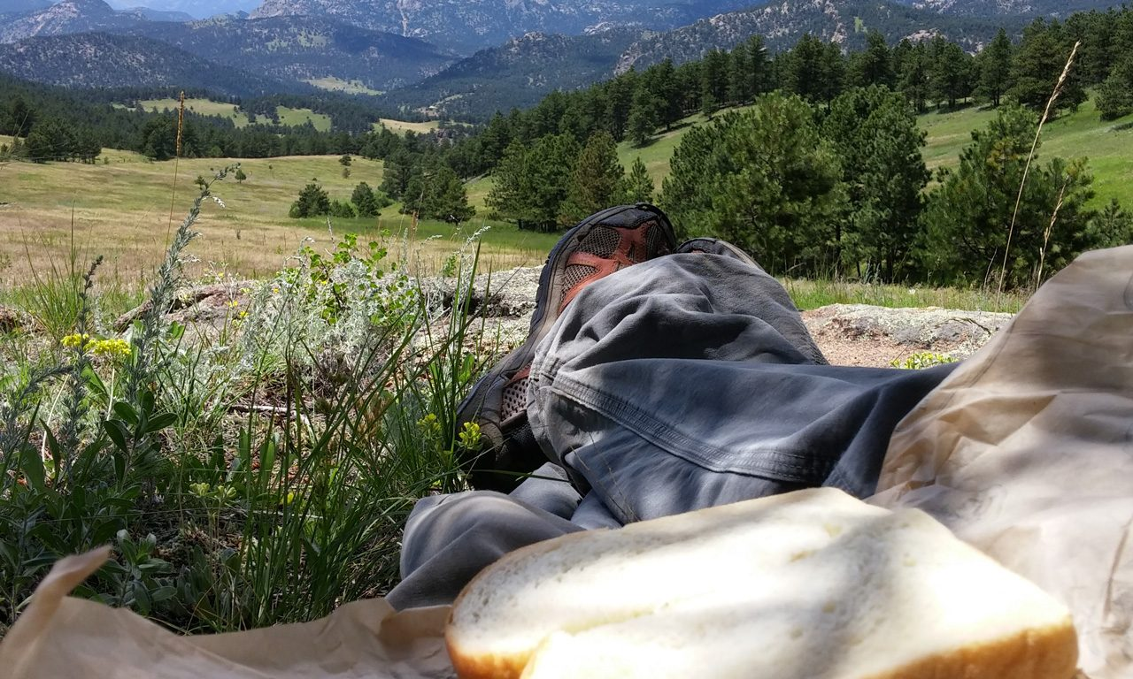 Best Seat in the House: A Picnic on Open Space