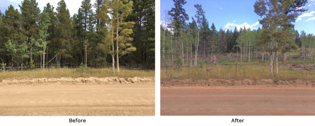 Reynolds Ranch Before and After