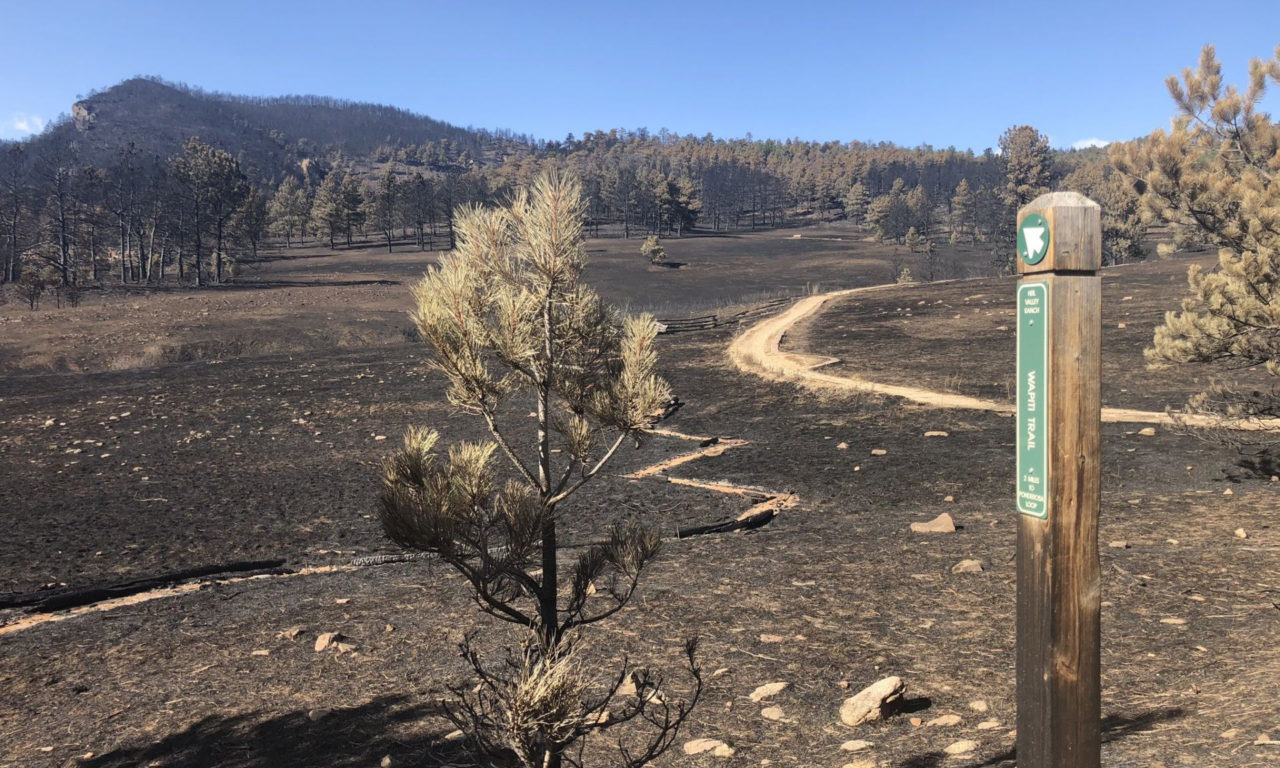 CalWood Fire: Firsthand Account