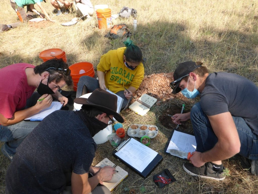 Students performing a soil survey