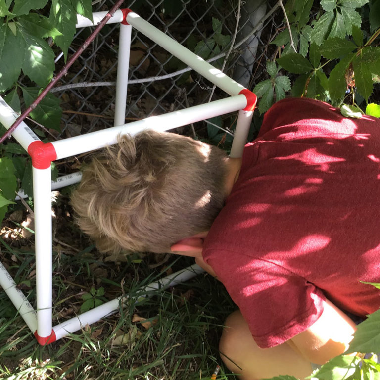 Outdoor Learning Lab: The Biocube Project